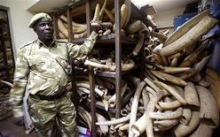 <p>A Kenya Wildlife Services ranger shows elephant tusks intercepted from poachers during a commemoration of the 1989 ivory burning at the Nairobi National Park July 18, 2009. REUTERS/Thomas Mukoya</p>