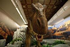 <p>Imagen de archivo de una réplica de un Tiranosaurio Rex, en un museo en Taipei. Dic 12 2009. Científicos australianos hallaron evidencia de que dinosaurios del género Tyrannosaurus recorrieron los continentes del hemisferio sur, gracias al descubrimiento de un fósil de un hueso de la cadera de un pequeño Tiranosaurio Rex en el sur del país. REUTERS/Nicky Loh/ARCHIVO</p>