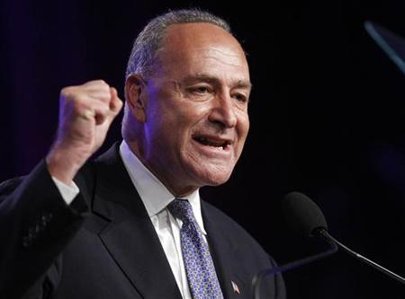 Senator Charles Schumer speaks at the NAACP's Centennial Convention, in New York, July 12, 2009. REUTERS/Chip East