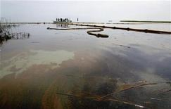 <p>Нефтяное пятно у побережья штата Луизиана 26 мая 2010 года. Расходы нефтяного гиганта BP на борьбу с утечкой нефти в Мексиканском заливе на настоящее время составили $990 миллионов, сообщила компания во вторник. REUTERS/Sean Gardner</p>
