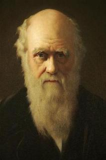 A detail of British artist John Collier's 1883 painting of Charles Darwin is displayed as part of an exhibition in Darwin's former home, Down House, in Kent, southern England February 12, 2009. REUTERS/Tal Cohen