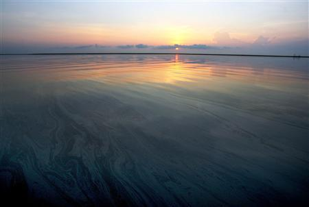 An oil sheen covers the surface of Bay Jimmy near Port Sulpher, Louisiana June 20, 2010. REUTERS/Sean Gardner