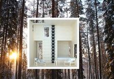 <p>An undated concept design shows a cross-section of The Mirrorcube, designed by Tham & Videgard Architects, to be constructed on the site of Treehotel in the Swedish village of Harads. REUTERS/Tham & Videgard Architects/Treehotel/Handout</p>