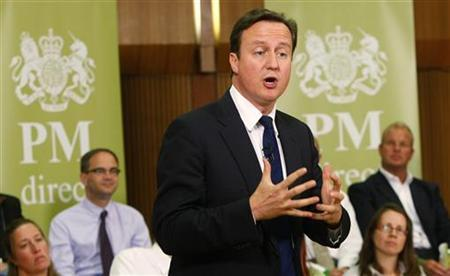 Prime Minister David Cameron gestures as he speaks in Hove Town Hall in southern England August 5, 2010. REUTERS/Alistair Grant/Pool