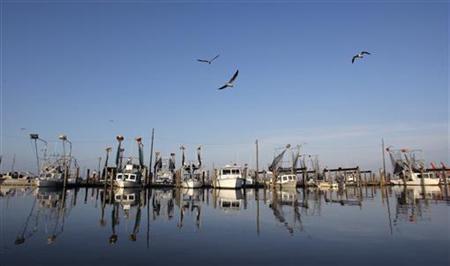 Idle shrimp boats float at the docks of Joshua's Marina in Buras, Louisiana May 17, 2010. REUTERS/Hans Deryk