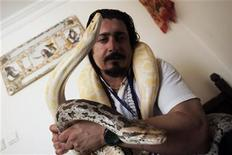 <p>Iranian animal trainer Amir Rahbari plays with his Indian Python called Narine (bottom) and Yellow Albimo Corn Snake called Melissa, in his rooftop studio flat at a housing complex in northern Tehran August 15, 2010. REUTERS/Morteza Nikoubazl</p>