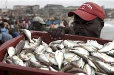 <p>A worker carries a crate of fish at the fishing harbour of James town, in Accra, September 2, 2009. REUTERS/Akintunde Akinleye</p>
