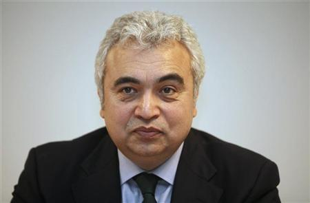 International Energy Agency (IEA) Chief Economist Fatih Birol speaks during a news conference after the opening of the International Energy and Environment Fair and Conference in Istanbul May 12, 2010. REUTERS/ Osman Orsal