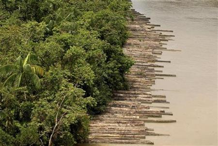 Illegally logged timber, which has been confiscated, is floated down the Guamá River Delta in the northeastern state of Para April 14, 2010. REUTERS/Paulo Santos