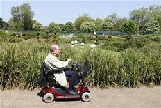 <p>An elderly man in a electric wheelchair smokes a cigar as he rides through Hyde Park in London, May 19, 2010. REUTERS/Stefan Wermuth</p>