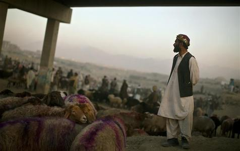 A vendor waits for customers under a bridge at a livestock market in Kabul November 14, 2010. Muslims across the world are preparing to celebrate the annual festival of Eid al-Adha or the Festival of Sacrifice, which marks the end of the haj pilgrimage to Mecca by hundreds of millions of Muslims, with the slaughter of goats, sheep and cattle in commemoration of the Prophet Abraham's readiness to sacrifice his son to show obedience to Allah. REUTERS/Ahmad Masood