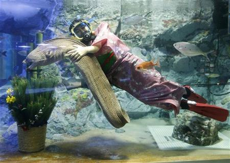 A diver clad in Japanese kimono swims with an eel next to a traditional New Year's decoration during a rehearsal for the New Year's attraction at Sunshine International Aquarium in Tokyo December 31, 2008. REUTERS/Yuriko Nakao (JAPAN)