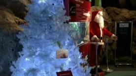 <p>An electric eel illuminates a Christmas tree in Kamakura, just south of Tokyo, in this image taken from television footage. REUTERS TV</p>