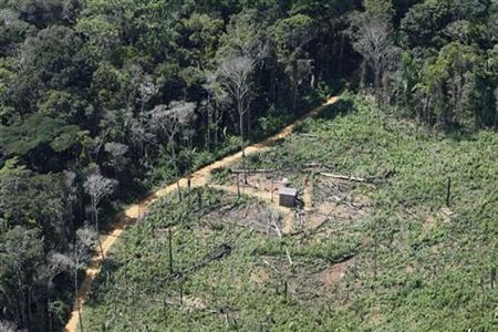 A devastated forest area is seen at the National Forest Reservation Bom Futuro (Good Future), some 200km (124 miles) from Porto Velho in this May 19, 2009 file photo. REUTERS/Roberto Jayme/files