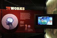 "<p>A view from the American Museum of Natural History's exhibit ""Brain: The Inside Story."" REUTERS/AMNH/Handout</p>"