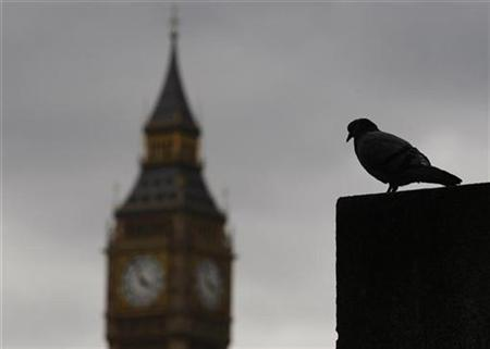A pigeon perches on a plinth opposite the Houses of Parliament on an overcast summer's day in London, August 4, 2009. REUTERS/Andrew Winning