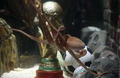 <p>File picture shows Germany's so-called oracle octopus Paul as it swims in front of a mock soccer World Cup trophy in his tank at the Sea Life Aquarium in the western German city of Oberhausen July 12, 2010. REUTERS/Wolfgang Rattay/File</p>