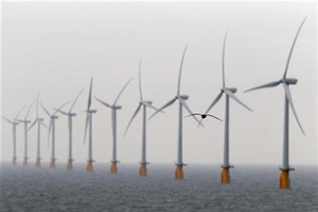 A seagull flies past wind turbines at Thanet Offshore Wind Farm off the Kent coast in southern England September 23, 2010. REUTERS/Stefan Wermuth