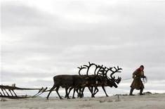 <p>A Nenets woman leads her reindeer on the Yamal peninsula, north of the polar circle, August 4, 2009. REUTERS/Denis Sinyakov</p>