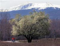 <p>Велосипедисты едут по дороге на фоне горного массива Витоша близ Софии, 3 апреля 2002 года. У вас появились желание и возможность провести 48 часов в Софии? REUTERS/Dimitar Dilkoff</p>