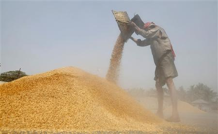 A labourer works at a rice mill on the outskirts of Agartala, capital of India's northeastern state of Tripura March 3, 2011. REUTERS/Jayanta Dey