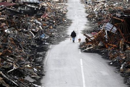 A man walks with his dog at a destroyed residential area of Kesennuma, Miyagi Prefecture, March 22, 2011, nearly two weeks after the area was devastated by a magnitude 9.0 earthquake and tsunami. REUTERS/Issei Kato
