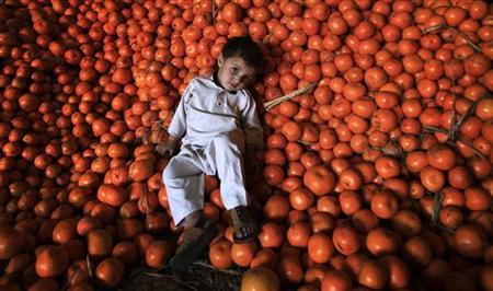 A child rests on a pile of oranges at a fruit market in Peshawar March 10, 2011. REUTERS/Fayaz Aziz