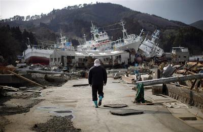 Japan's ravaged landscape