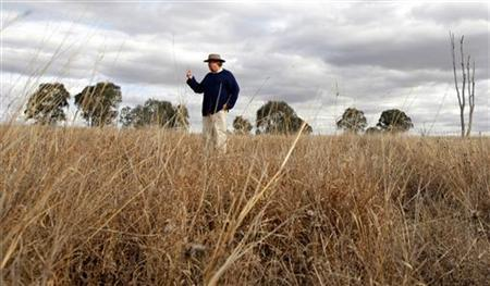 Australian farmer and joint founder of the lobby group Carbon Coalition Michael Kiely stands in a sheep paddock at Uamby, his farm west of Gulgong, about 240km (149 miles) north west of Sydney May 26, 2009. REUTERS/Tim Wimborne