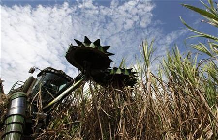 A combine harvester cuts sugar cane in a field on the property of the Cossan mill in Piracicaba, about 200 km (124 miles) northwest of Sao Paulo, July 29, 2010. REUTERS/Nacho Doce