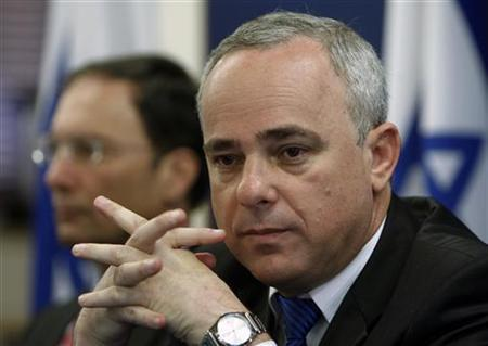 Israel's Finance Minister Yuval Steinitz holds a news conference in Jerusalem February 23, 2010. REUTERS/Ronen Zvulun