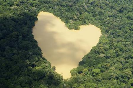 An aerial view of a natural lake fed by a spring in the Amazon River basin near Manaus, September 30, 2010. REUTERS/Ivan Canabrava