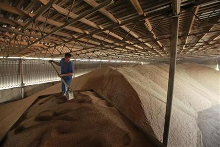 A worker shovels grain in a warehouse in the the village of Konstantinovo, some 60 km (37 miles) from the Southern Russian city of Stavropol June 7, 2011. REUTERS/Eduard Korniyenko