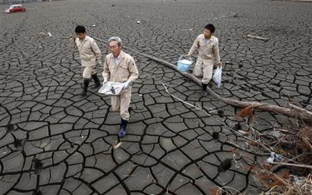 Employees of Fukushima prefecture's agricultural industry department walk on the dried-up rice paddy which was devastated by the March 11 earthquake and tsunami in Soma, about 50km from the crippled Fukushima Daiichi nuclear power plant, May 11, 2011. REUTERS/Issei Kato