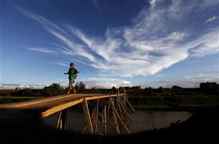 A schoolboy walks on a bridge in Mamba village outside Madagascar's capital Antananarivo November 22, 2010. REUTERS/Siphiwe Sibeko