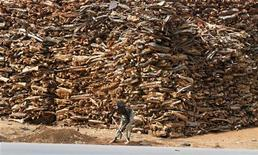 <p>A boy works in front of a stack of firewood arranged along a road in Nigeria's northern city of Katsina May 7,2010. REUTERS/Akintunde Akinleye</p>