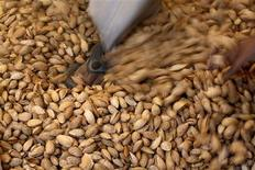 <p>A labourer crushes raw almonds with his feet inside a small-scale factory unit in New Delhi January 15, 2011. REUTERS/Parivartan Sharma</p>