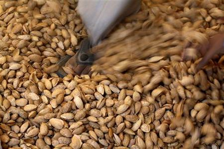 A labourer crushes raw almonds with his feet inside a small-scale factory unit in New Delhi January 15, 2011. REUTERS/Parivartan Sharma