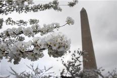 <p>Foto de archivo del momumento a Washington en EEUU, mar 24 2011. El sismo que sacudió gran parte de la costa este de Estados Unidos produjo grietas en una de las piedras en la parte superior del Monumento a Washington, dijo el miércoles un portavoz del Servicio de Parques Nacionales. REUTERS/Hyungwon Kang</p>