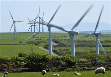 A windfarm is seen on Anglesey, north Wales May 2, 2011. REUTERS/Toby Melville
