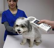 <p>Veterinary technician Trevor Van Eeuwen uses a hand-held scanner to check for an implant, a rice-sized microchip, on Roxy a 7-year-old maltipoo, with the help of Veterinary technician Natalie Hartman (L) at Summit Dog and Cat Hospital in Summit, New Jersey October 22, 2011. Across the United States, 26 percent of dogs had implanted microchips in 2010 compared to 17 percent in 2009, according to an annual survey of pet owners by American Pet Products Association. Some 12 percent of cats had microchips in 2010. REUTERS/Babara Goldberg</p>