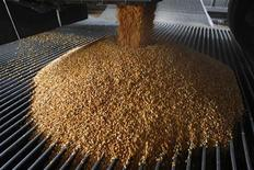<p>A load of corn is dumped from a truck into a receiving bin at the GreenField Ethanol plant in Chatham, Ontario, April 10, 2008. REUTERS/Mark Blinch</p>