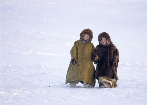 Nenets of the north