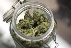 <p>Les électeurs du Colorado se sont prononcés mardi en faveur de la légalisation de l'usage de la marijuana à titre récréatif, ouvrant la voie à une possible épreuve de force avec le gouvernement fédéral. Il s'agit du premier Etat américain à légaliser l'usage de la marijuana à titre récréatif. /Photo d'archives/REUTERS/Cliff DesPeaux</p>