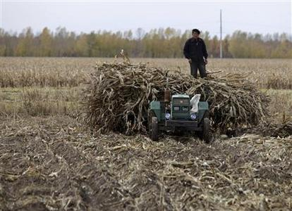 A farmer stands on a tractor loaded with corn stalks at a private plantation near Suibin state farm, Heilongjiang province in this October 16, 2012 file photo. REUTERS/David Stanway/Files