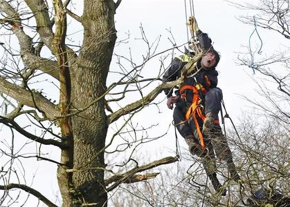 A specially trained bailiff lowers a restrained demonstrator from a tree during a protest against the construction of a new road by-pass at Crowhurst, near Hastings in south east England January 8, 2013. REUTERS/Luke MacGregor