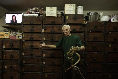 Snake soup shop