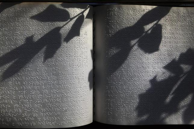 The shadow of a plant falls upon the pages of the Book of Genesis, written in Braille, as it sits in a hallway at the World Services for the Blind (WSB) in Little Rock, Arkansas January 8, 2013.  REUTERS/Gaia Squarci