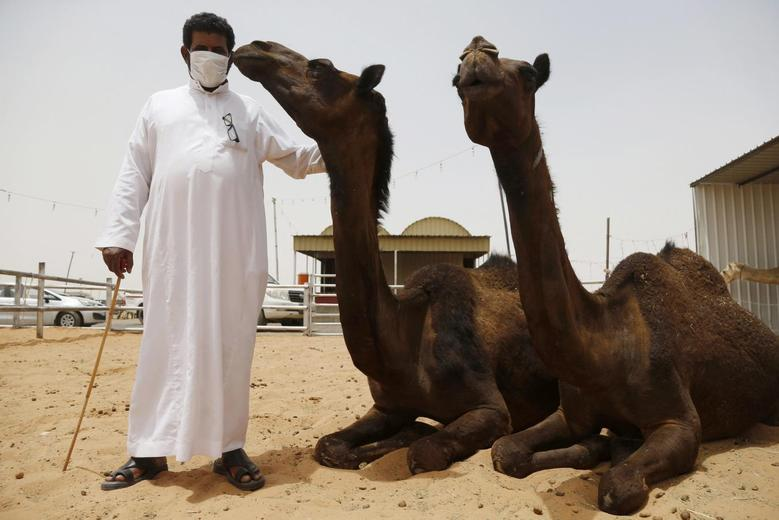 A man wearing a mask poses with camels at a camel market in the village of al-Thamama near Riyadh May 11, 2014. REUTERS/Faisal Al Nasser