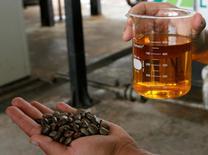 Un trabajador muestra biodiésel preparado con semillas de ricino en una refinería en Iraquara, Brasil, mar 31 2008. Brasil incrementará la cantidad de biodiésel que debe mezclarse en el diésel a 6 por ciento en julio y a 7 por ciento en noviembre desde un 5 por ciento actual, dijo el ministro de minas y energía Edison Lobão el miércoles. REUTERS/Jamil Bittar